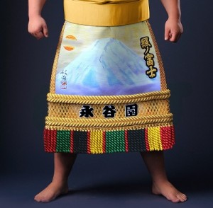 syounofuji1